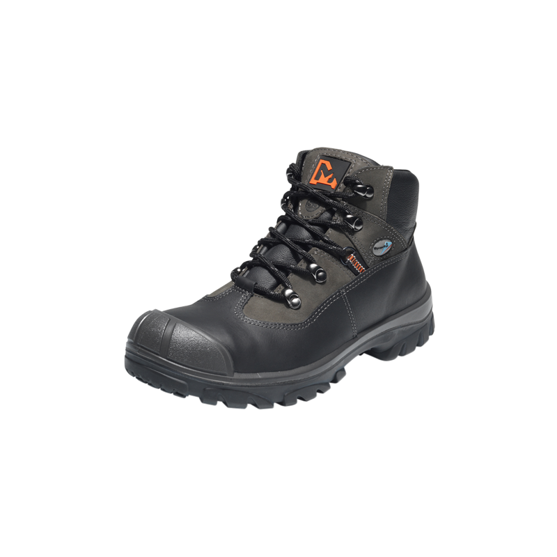 Emma Safety Shoes Price