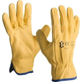 Driver gloves in cowhide leather - L-2LY